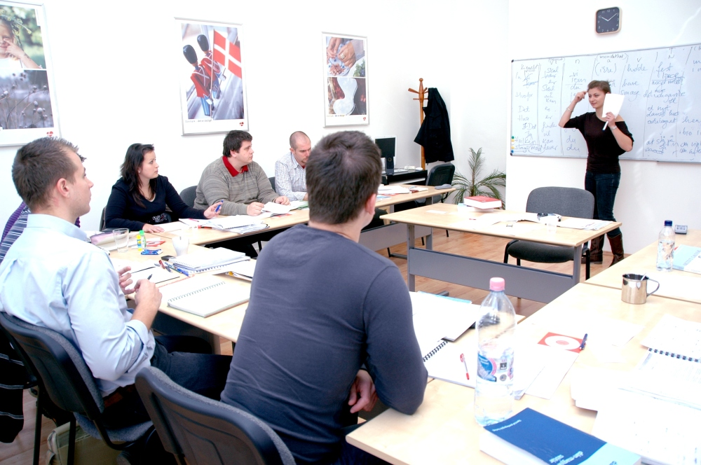 Danish culture and language teaching for specialist doctors and dentists
